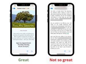 Eblast Text Example